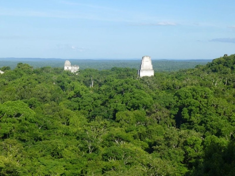 Exploring Tikal. Sun, Stars and Snakes.