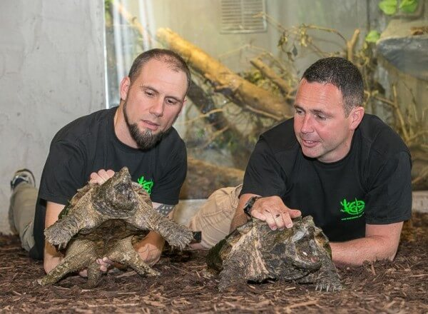 Celebrating Conservation Collaboration – with National Reptile Zoo