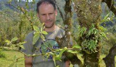 Saving the spikethumb frog of Alta Verapaz