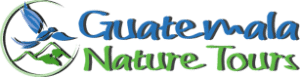 Guatemala Nature Tours