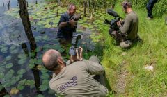 Filming for nature conservation in Guatemala