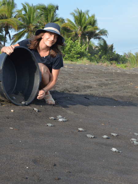 sea turtle conservation volunteer