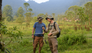 Endangered Amphibian Research Guatemala