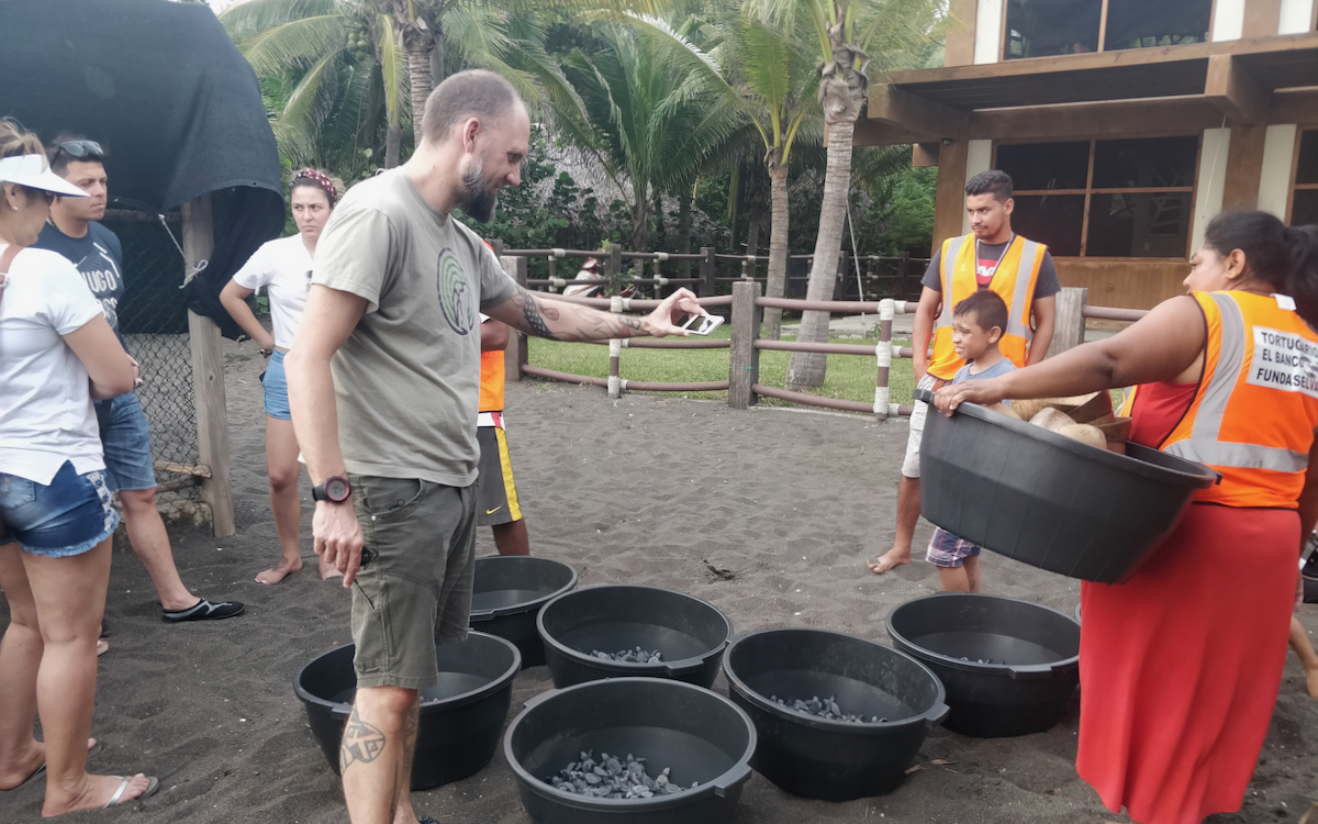 Sea Turtle Conservation Guatemala